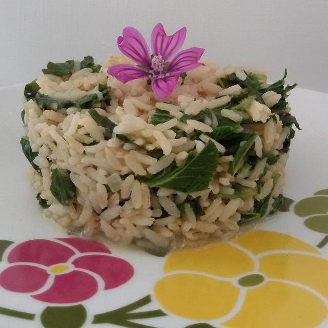 Cucinare con le erbe spontanee riso integrale alla malva - Cucinare riso integrale ...
