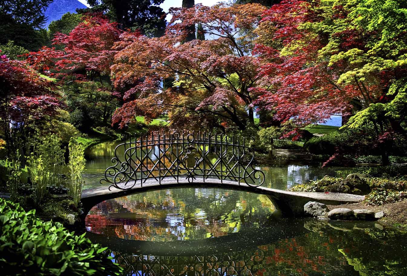 Autunno godetevi il foliage nei 33 for Foto case giapponesi