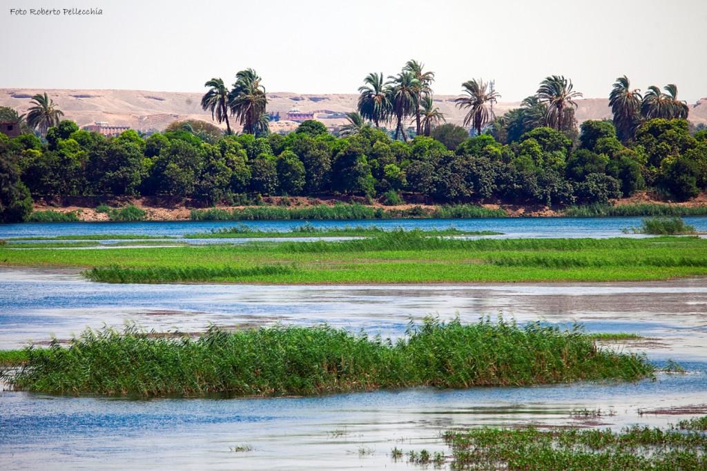 Lungo il Nilo
