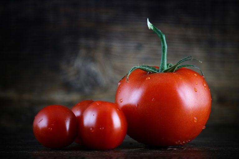 Biodiversità del pomodoro: dal miglioramento genetico, ai cambiamenti climatici