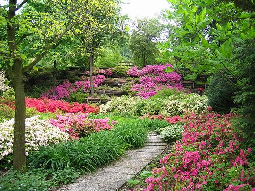 VerdeFirenze. Per gli amanti dei giardini un imperdibile appuntamento