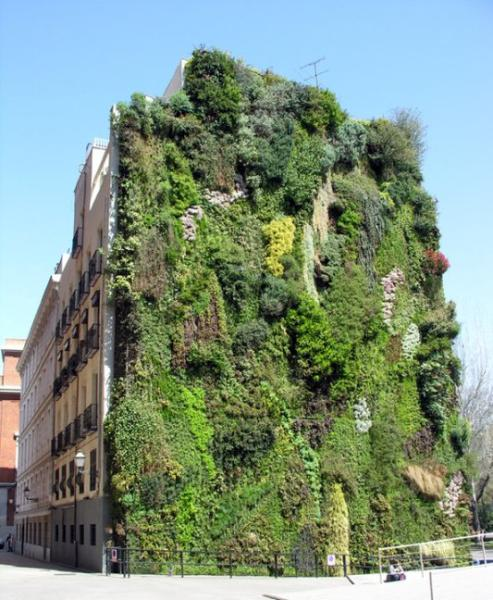 Pollici verdi urbani. Condominio madrileno docet…