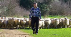 luigi farina pastore