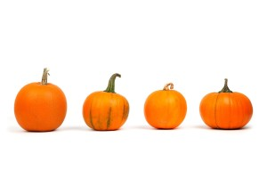 autumn-2905_1280