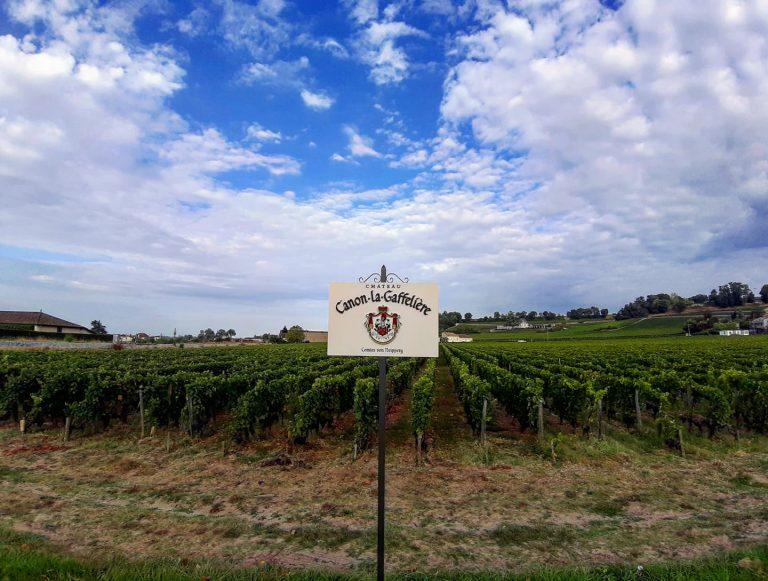 ALLA SCOPERTA. Una settimana a Bordeaux, tra vini e buona cucina…