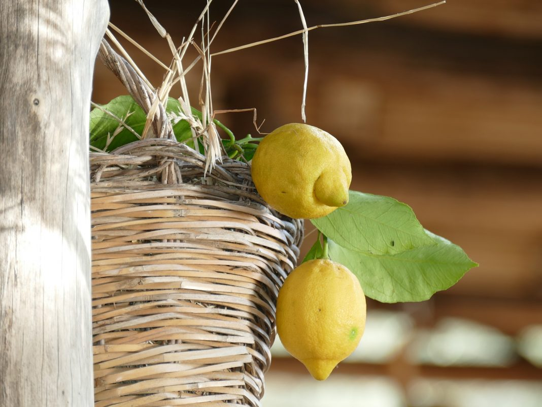 Distretto Agroalimentare di Qualità del Limone Costa d Amalfi IGP